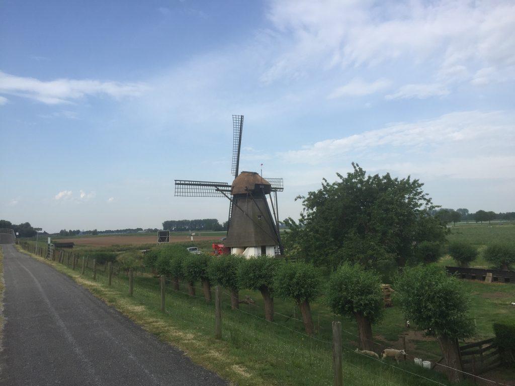 Vervoorne molen